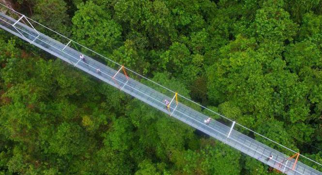 恐高者慎入!广西首座悬索玻璃桥亮相