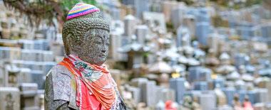 外媒盘点万圣节之际值得一游的十大最美墓地