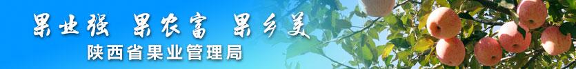 陜西省果業管理局