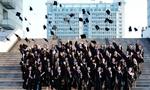 全国高校撤销35个软件工程学位点 为何大量撤销