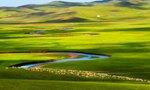 呼伦贝尔新一轮草原生态保护补助奖励农牧民享补贴