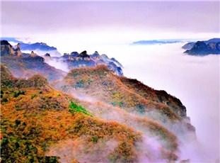 """山西王莽岭现""""层层山色远 处处云海飘""""奇特景观"""