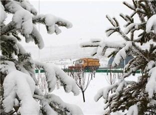 河北坝上迎来今年入冬首场降雪