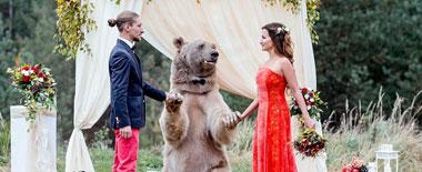 心跳的感觉:一对莫斯科新人请大棕熊当证婚人