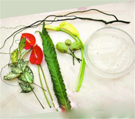 1.花材工具