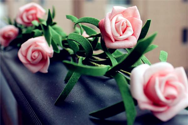 薔薇簡易插花的制作和欣賞