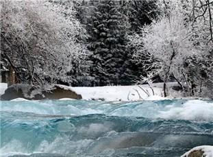 新疆别珍套山雪后雾凇美景幻如仙境