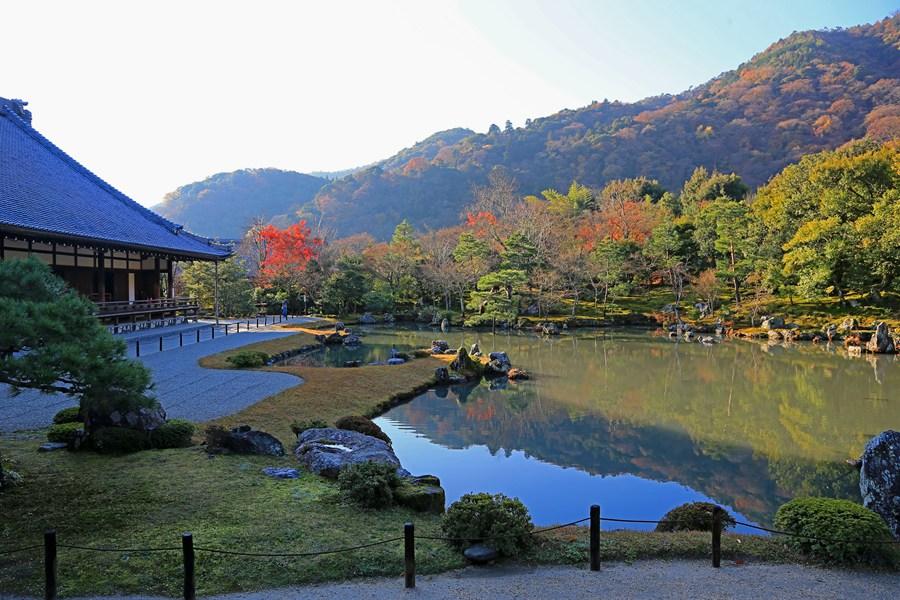 京都:天龙寺之庭院景色