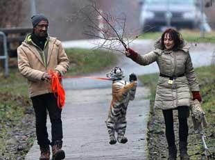 西伯利亚虎崽被人类家庭抚养 画面好有爱