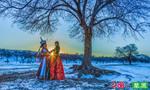 冬日的锡林郭勒草原:凛冽澄净 透彻光明