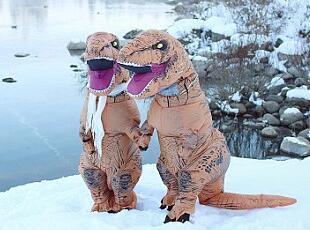 """有趣!美摄影师镜头下的""""恐龙夫妻""""订婚照"""