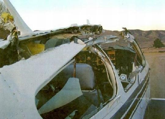 小鸟和劳斯莱斯婚车相撞鸟死车伤 盘点全球