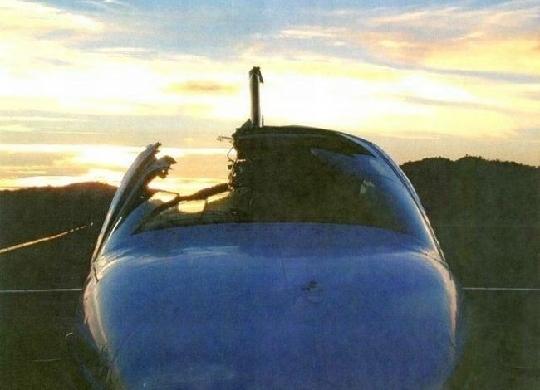劳斯莱斯婚车和鸟相撞 盘点全球