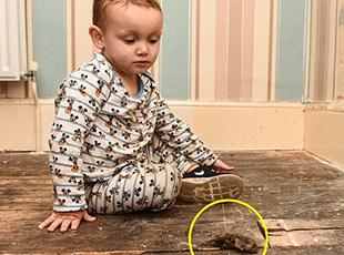 英母子8人因住所数百只老鼠活动被迫搬家