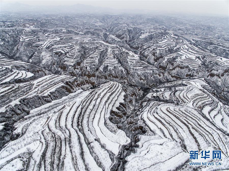 黄土高原降春雪