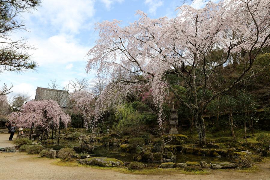奈良:吉野山竹林院(二)