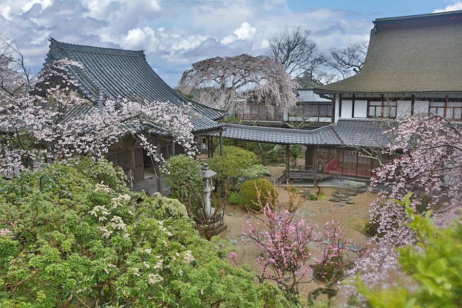 奈良:吉野山竹林院(三)
