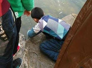 安徽淮北举办放鱼节 刚放就被抓