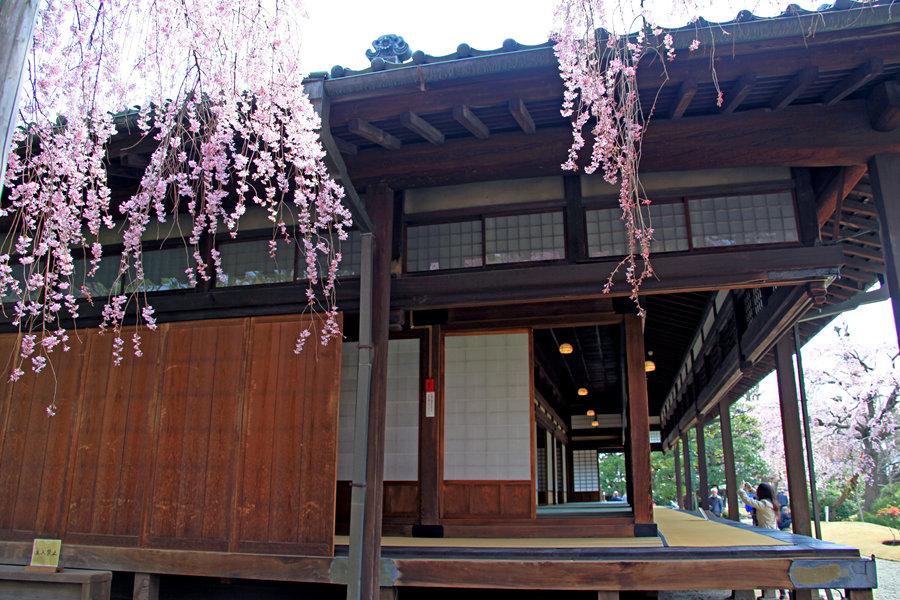 东京:浅草寺传法院(三)