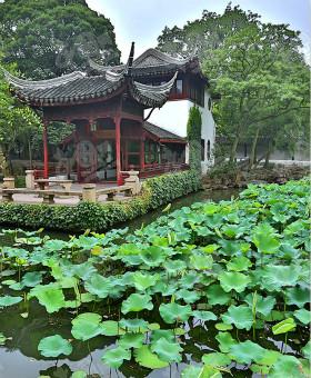【中国的世界文化遗产】之苏州古典园林 The Classical Gardens of Suzhou