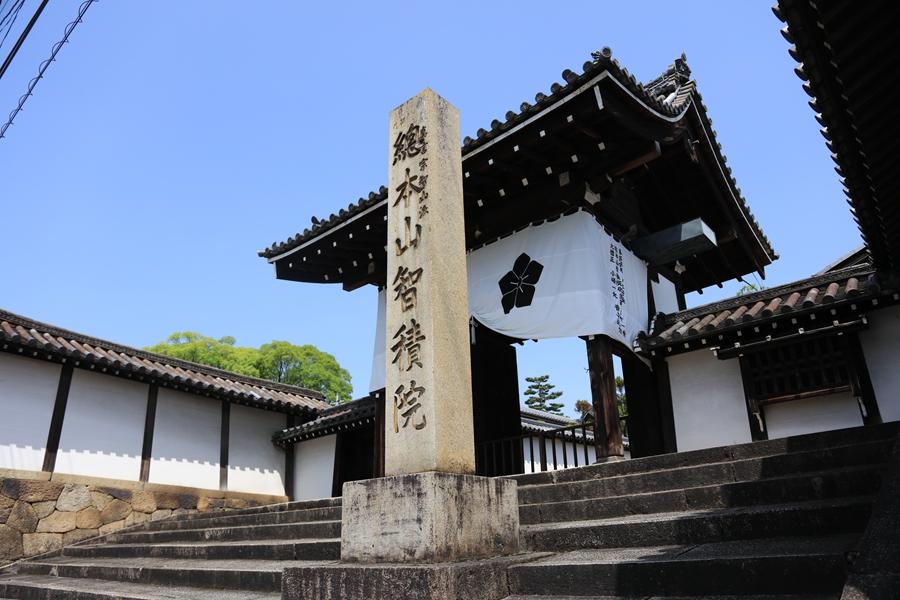 日式庭院:智积院(二)