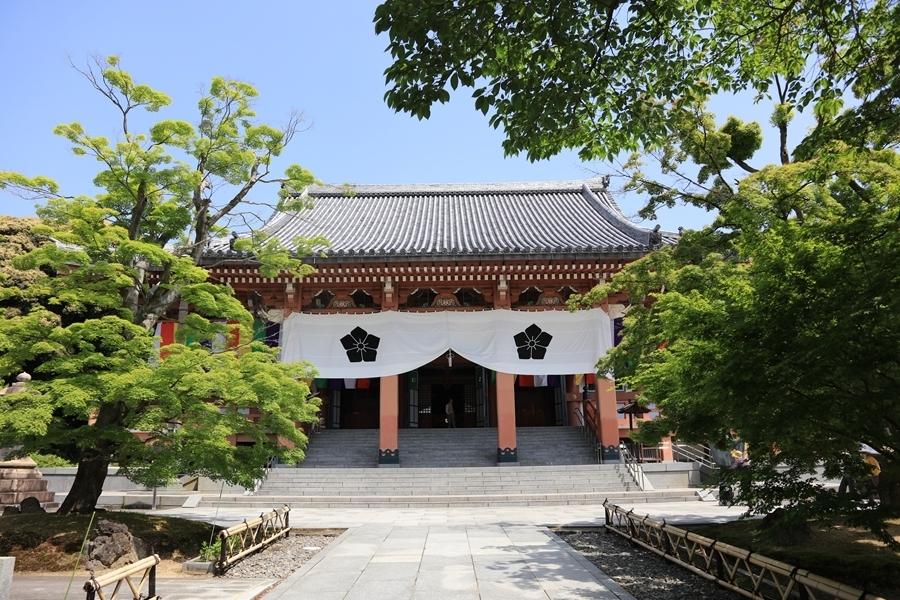 日式庭院:智积院(三)