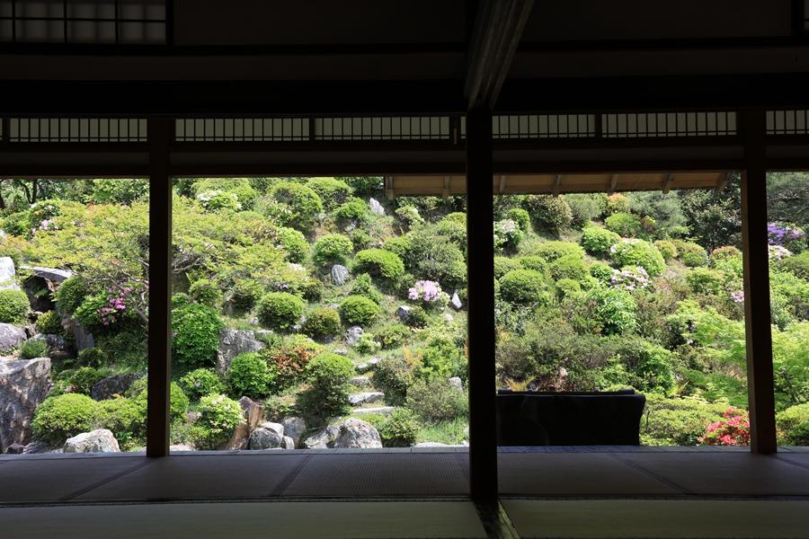 日式庭院:智积院(四)