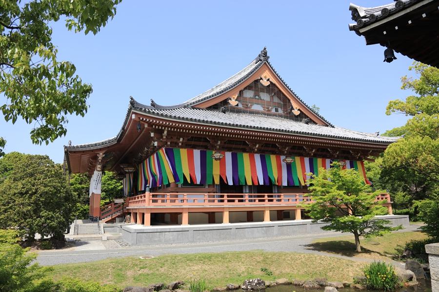 日式庭院:智积院(五)