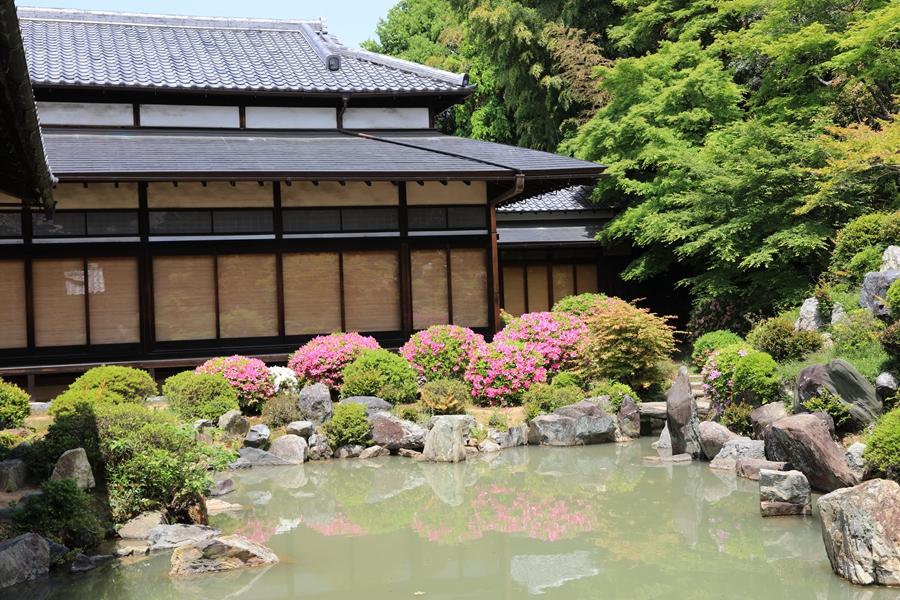 京都:智积院(六)