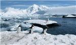 日本研究机构:南极海冰面积创新低 原因待查