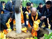 河北现集体公益'花葬树葬'