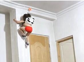 伊朗3岁健身小达人爆红 轻松做复杂体操动作