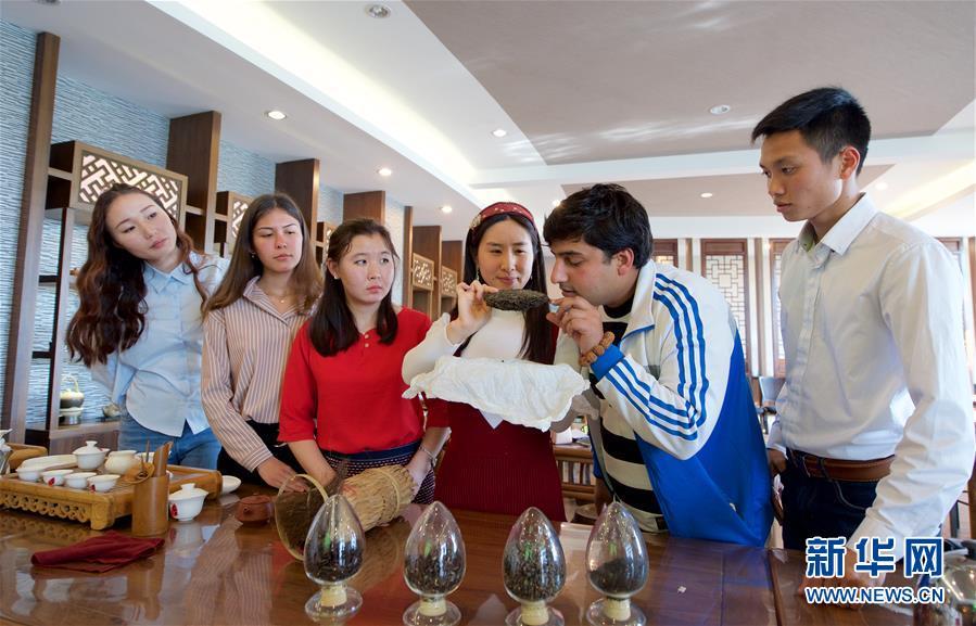 一带一路·好伙伴│洋学生武夷山学茶艺
