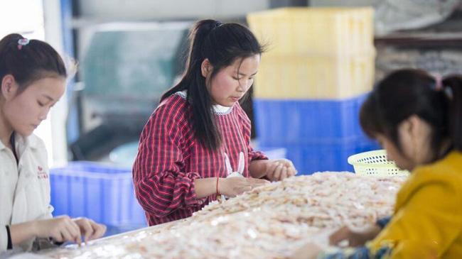"""江西""""珍珠之乡"""" 小贝壳成致富大产业"""