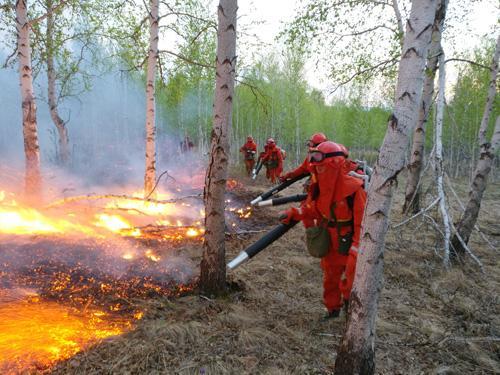 内蒙古森林火灾进入关键阶段 超八千兵力扑救