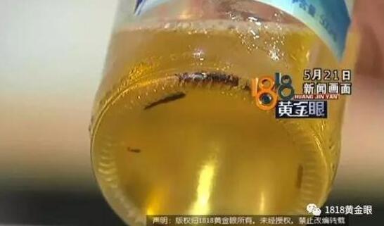 啤酒瓶里有异物 厂家:采访要走流程要先申请