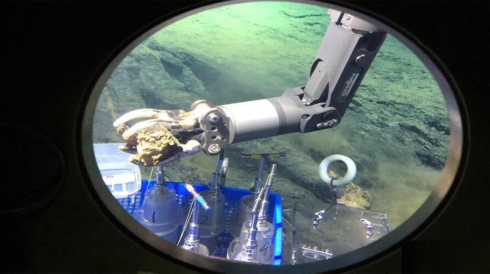 深潛馬利亞納海溝——海底世界見聞記