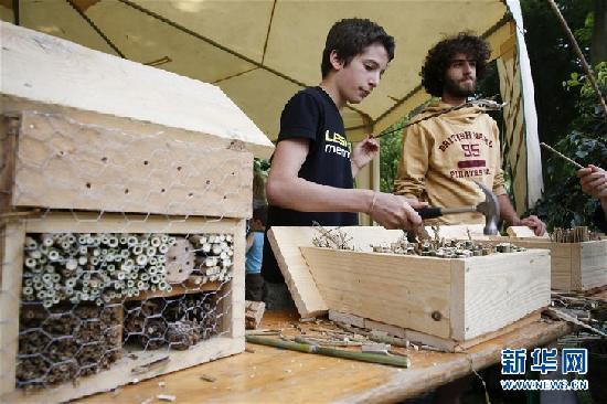 布鲁塞尔展示更环保生活方式 迎接世界环境日