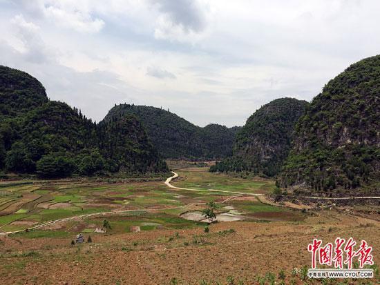 困牛山下的稻田,按照规划,未来这里将变成一片人工湖。中国青年报袁贻辰/摄