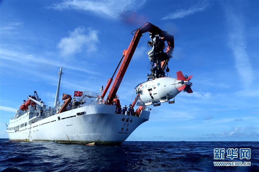 6600米太平洋深渊区大型动物见闻[组图]