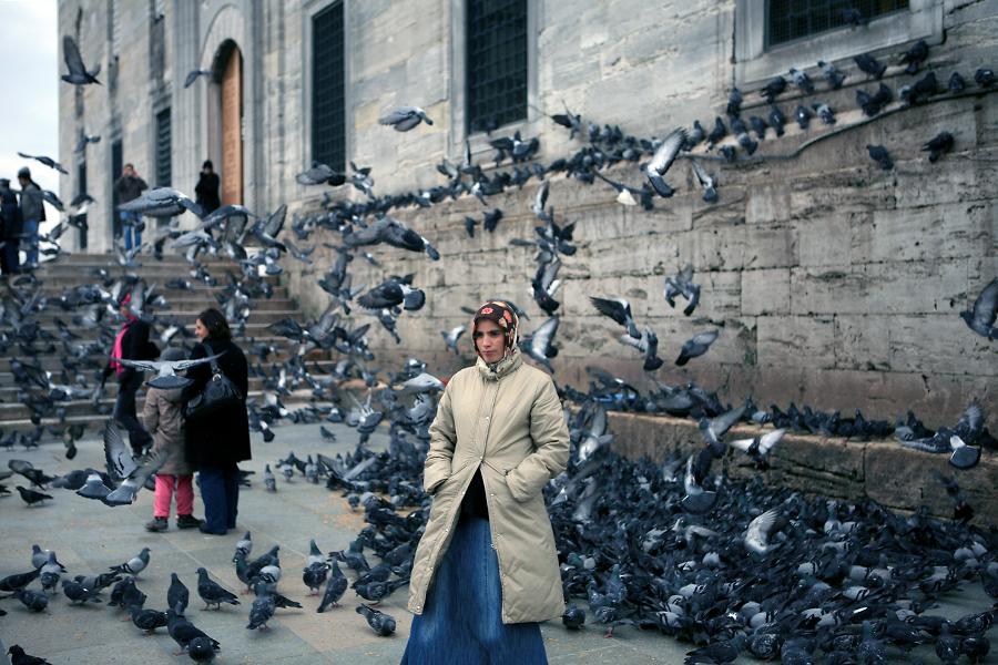 耶尼清真寺外的鸽群