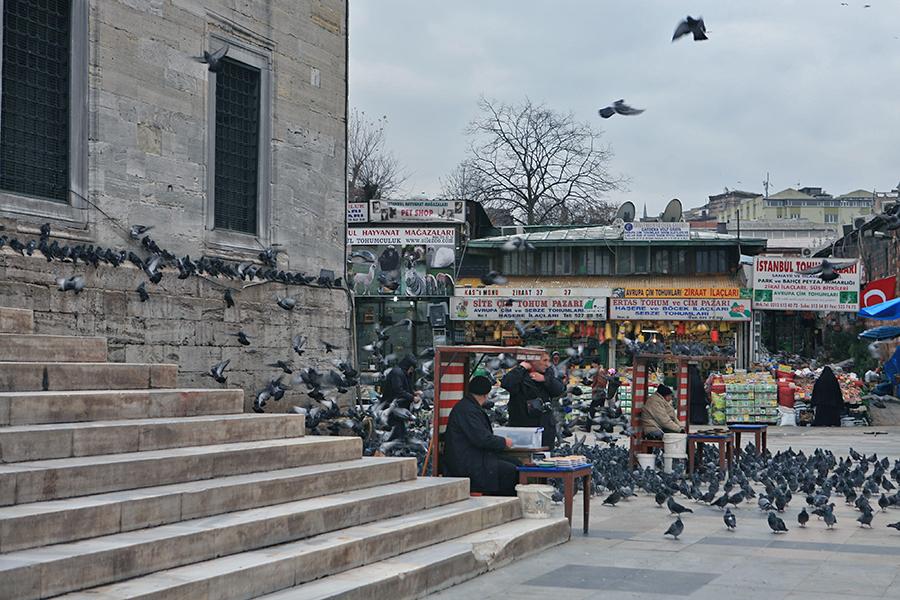 耶尼清真寺圣殿台阶