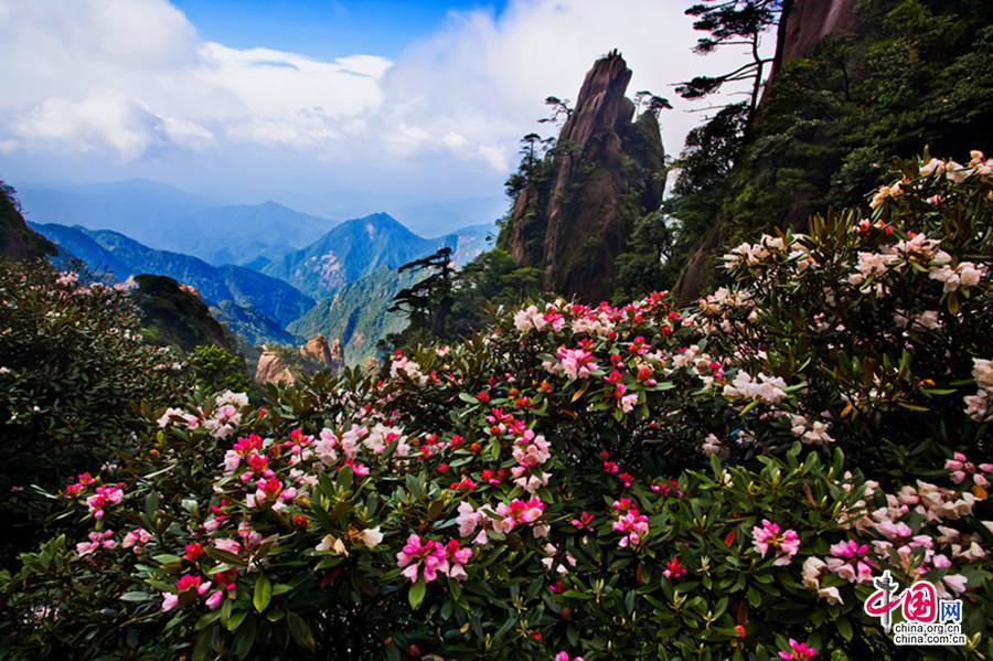 道教名山:三清山摄影作品