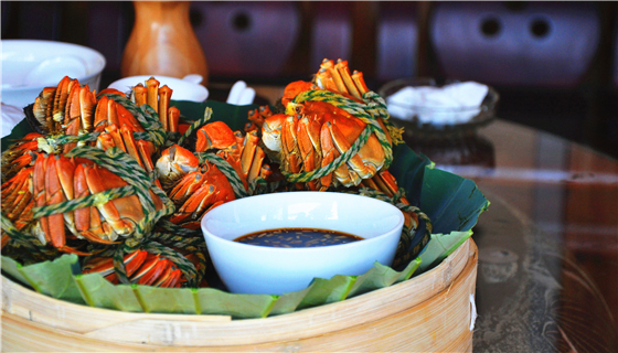 大量螃蟹現身黃浦江堤岸 專家:不建議食用