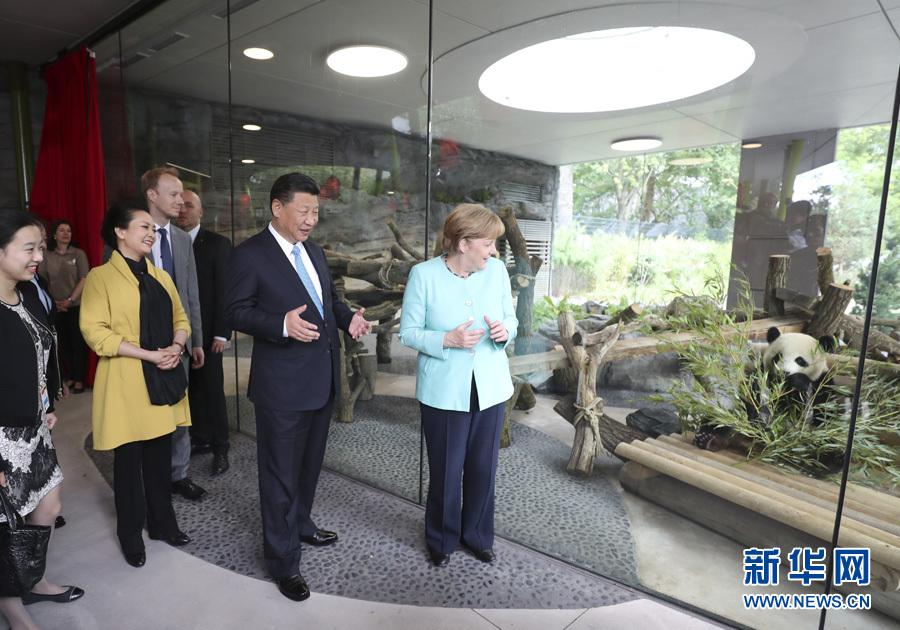 7月5日,国家主席习近平同德国总理默克尔共同出席柏林动物园大熊猫馆开馆仪式。这是习近平和夫人彭丽媛同默克尔在大熊猫馆。 新华社记者马占成 摄
