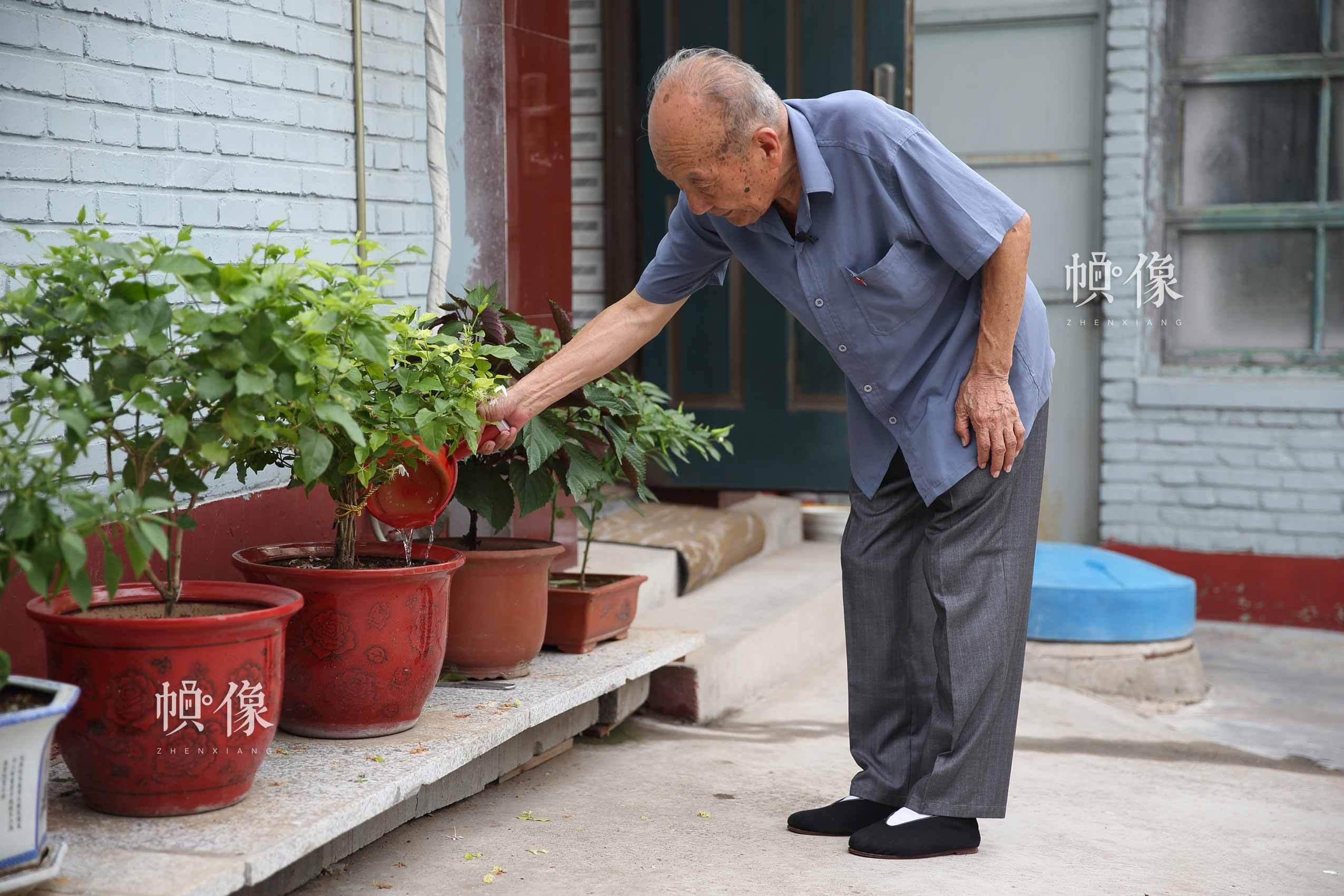 """在房子外边,郑福来种了些花,养了些菜。""""每天拾掇拾掇我的菜园子,然后去桥上蹓跶,给游客们讲故事。""""中国网记者 陈维松 摄"""