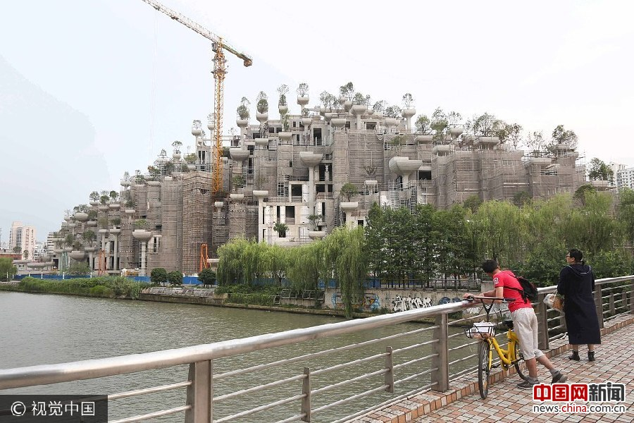 """上海现""""古巴比伦空中花园"""" 屋顶种满上千棵绿树( 02 / 4 )"""
