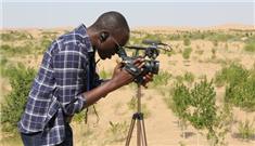 非洲沙漠也想变绿洲——27国记者走访库布其有感