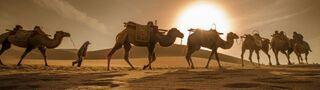 """借力""""一带一路"""" 新疆的文旅产业大有可为"""