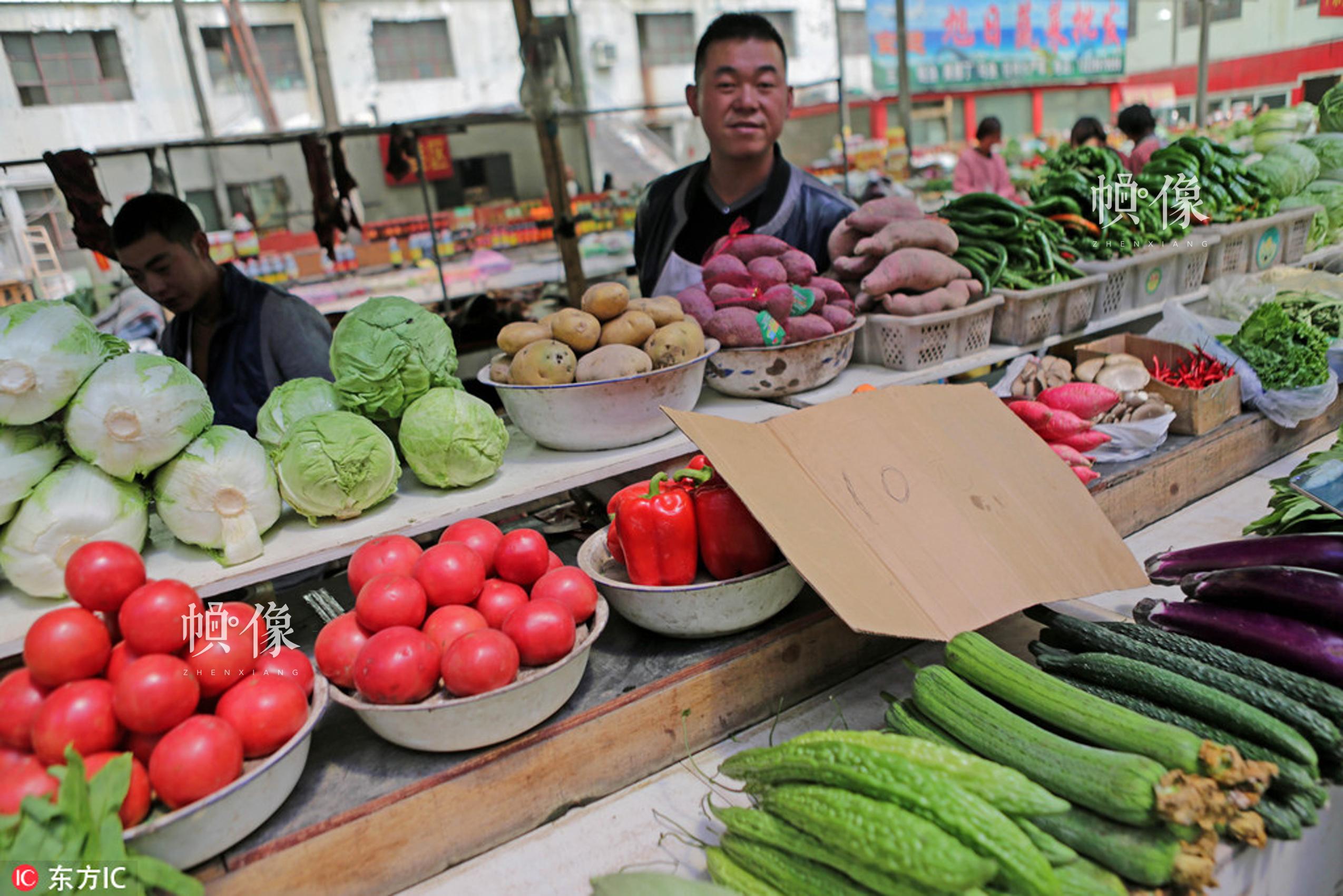 """2014年8月17日,图为海拔4255米西藏阿里地区噶尔县狮泉河镇最大的农贸市场,当地驻扎武警交通部队后勤战士在高原上采用无土栽培技术,让绿色绽放在阿里高原。如今的蔬菜大棚成了新藏线上有名的""""开心农场""""。文武 东方IC"""